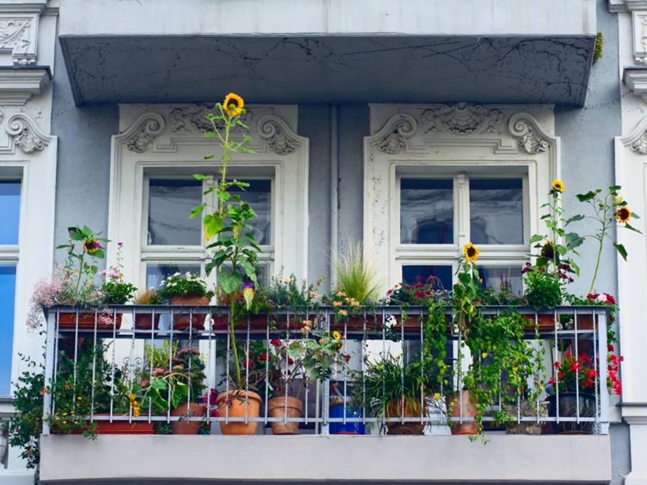 Balkon, Wohnfläche, Foto: iStock/justhavealook